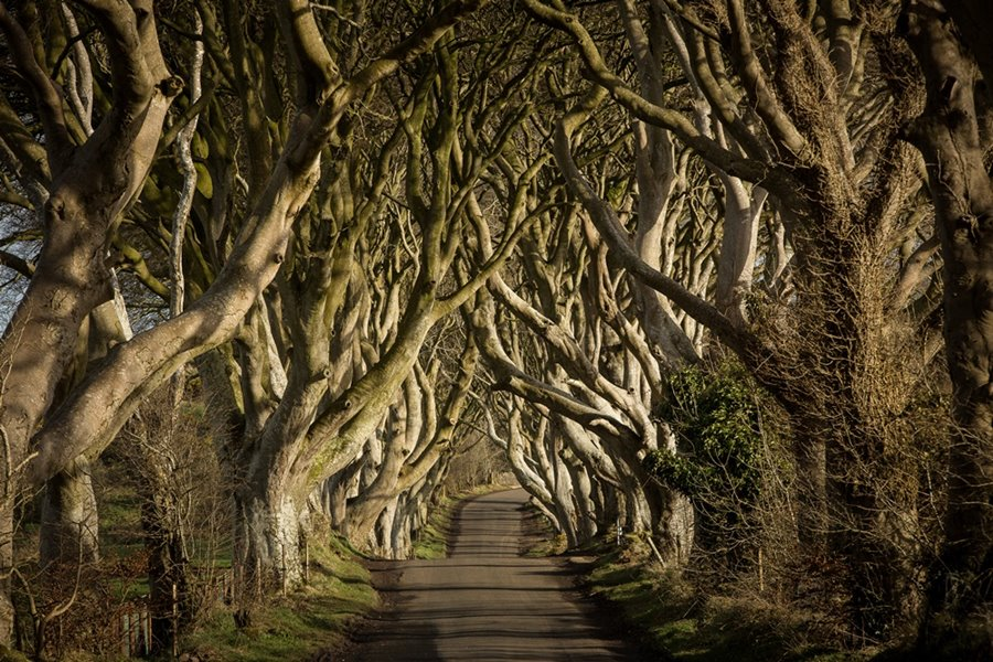 Game of Thrones Tour Filmreise Entertain Tours